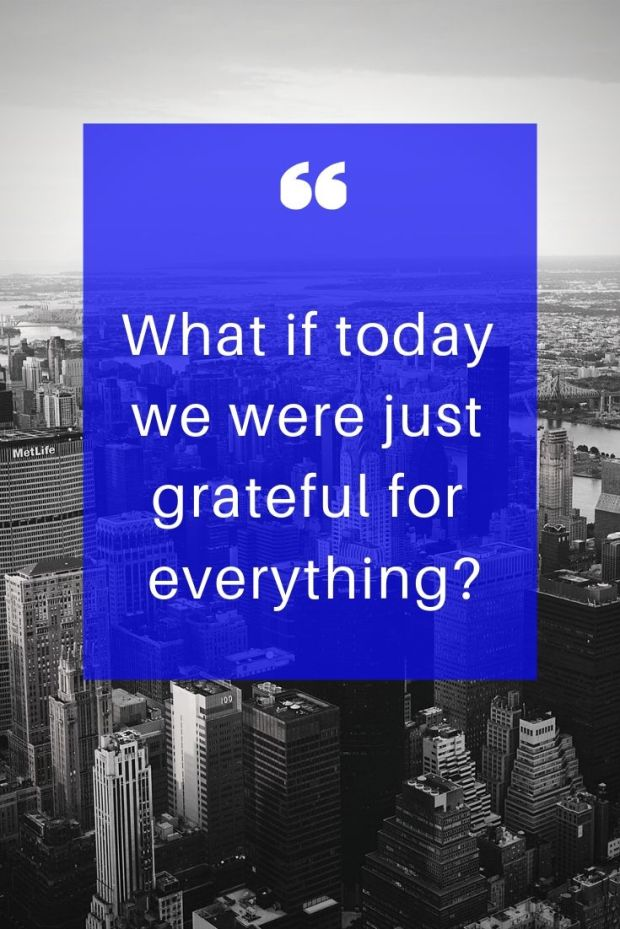 What if today we were just grateful for everything_